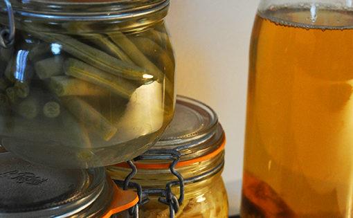 Apéritif lacto-fermenté avec probiotiques variés : cornichons, kéfir, choucroute...