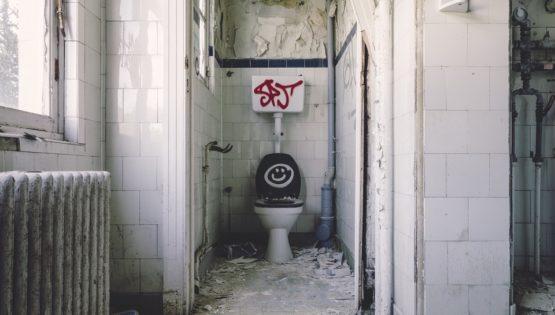 Les toilettes utilisées actuellement en Occident sont-elles obsolètes ?